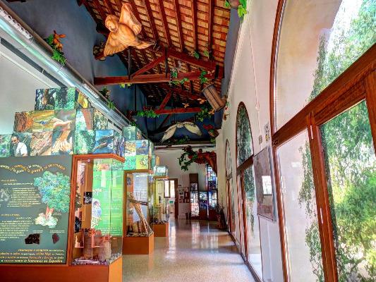 Centro de Visitantes. Interior.