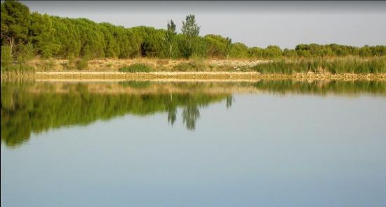 La estanca de Bolaso