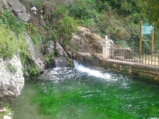 Fuente del rio