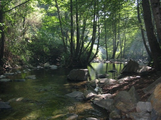 Ruta Montseny