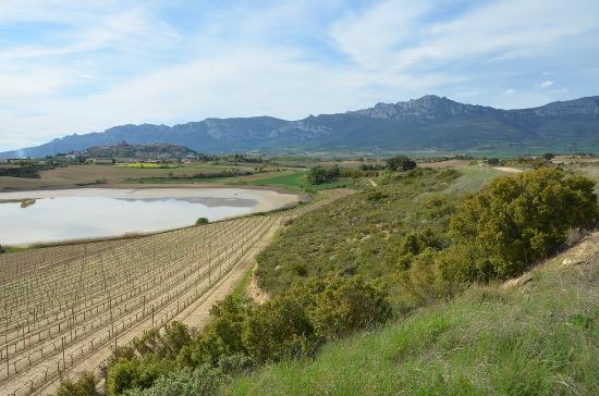 Ruta Rioja Alavesa