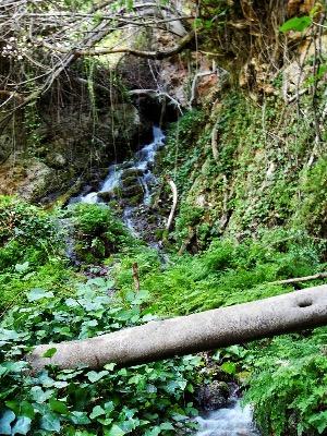 Ruta Cascada Letur